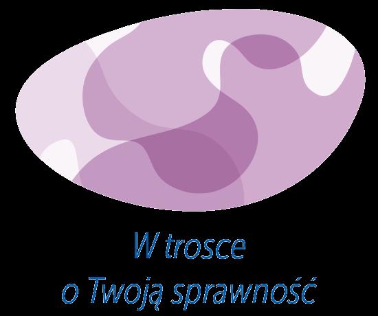 fizjo